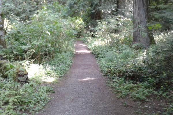 valley-mist-steep-path-from-parking-lot-pt24537047E-864C-06F4-7700-53DA6A7ED0A6.jpg